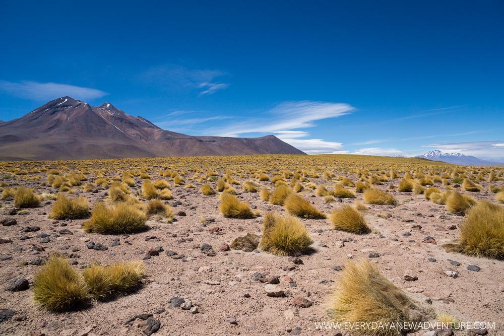 [SqSp Blog-013] San Pedro de Atacama-01396.jpg