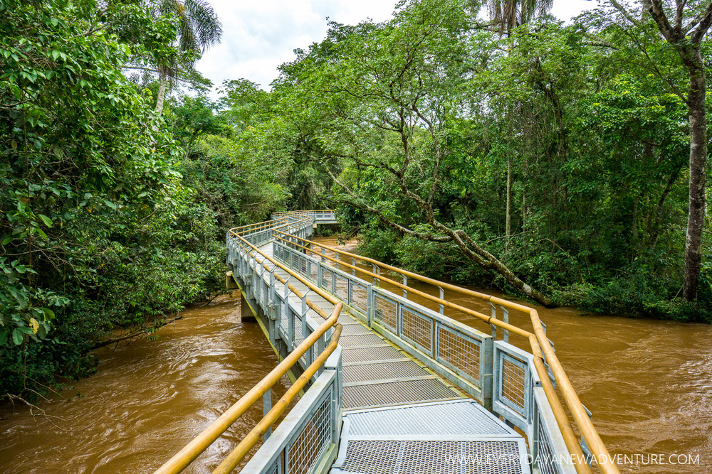 [SqSp Blog-058] Iguazu Falls-06781.jpg