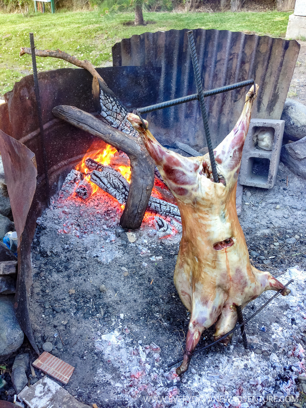 Christmas Eve dinner, roast Patagonian lamb!