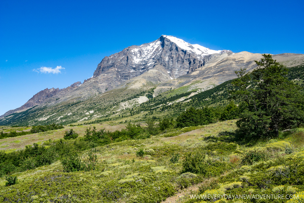 [SqSp Blog-002] Torres del Paine-03049.jpg