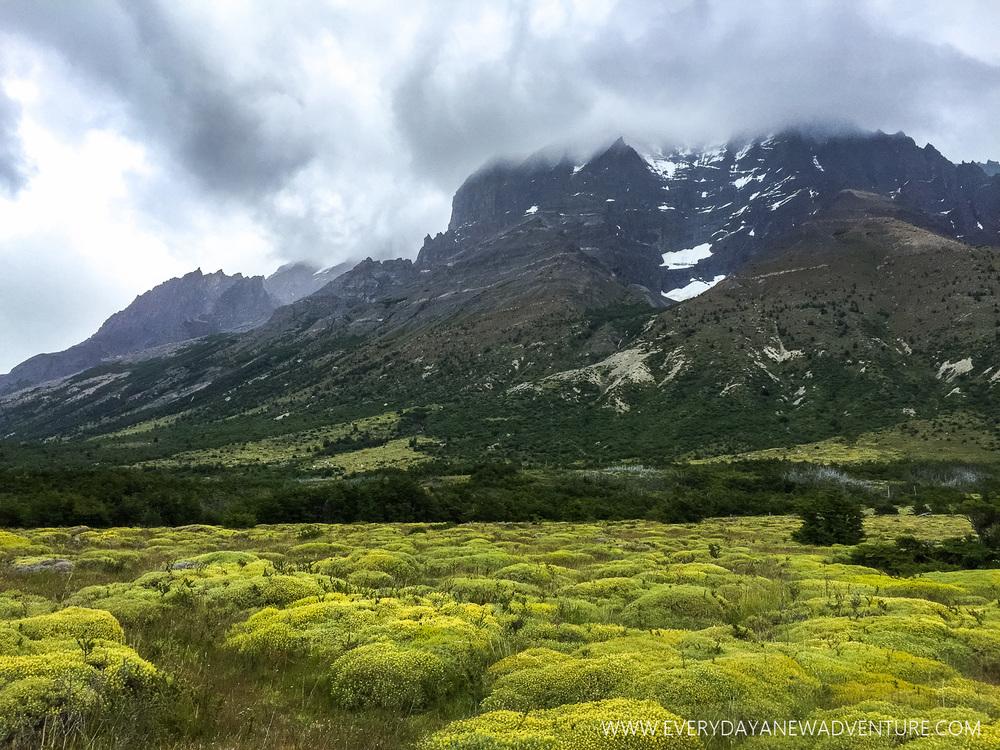 [SqSp Blog-014] Torres del Paine-7684.jpg
