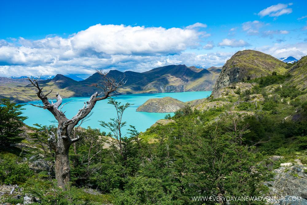 [SqSp Blog-023] Torres del Paine-03898.jpg