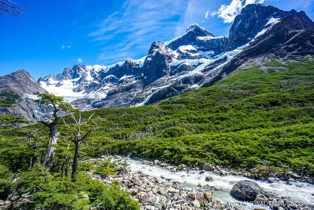 [SqSp Blog-033] Torres del Paine-04635.jpg