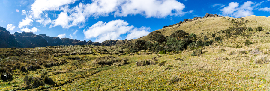 Rolling Hills in Cajas