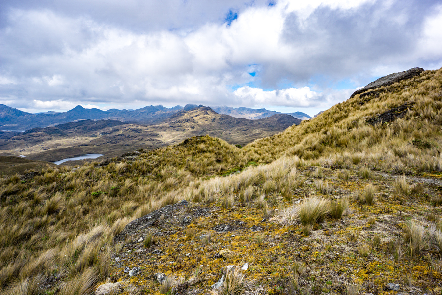 More Rolling Hills in Cajas