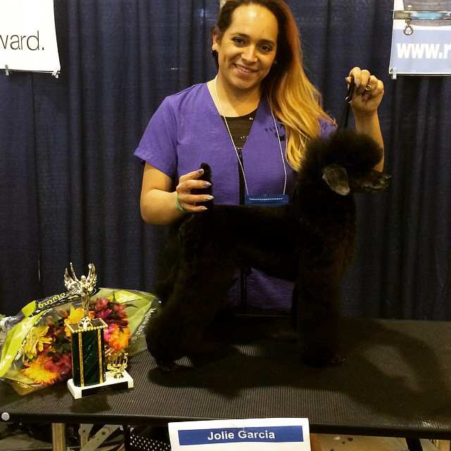 Head Stylist Jolie Garcia at Grooming Competition