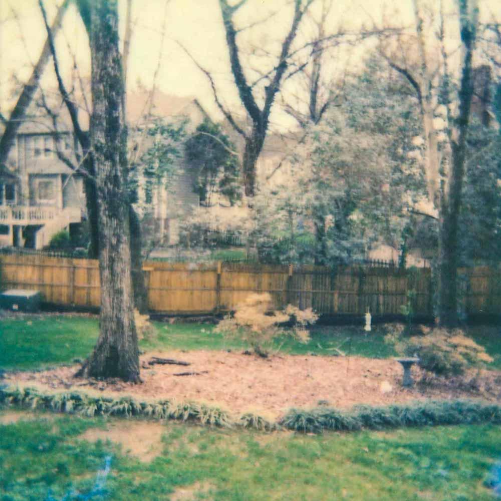 New Backyard (Charlotte, NC) 2015