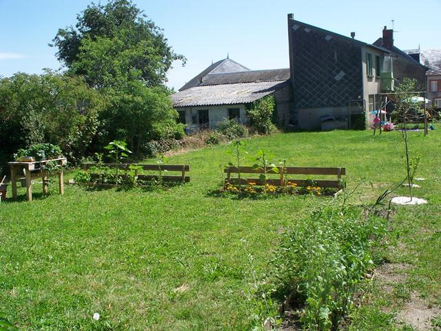 fruit and veg garden.jpg