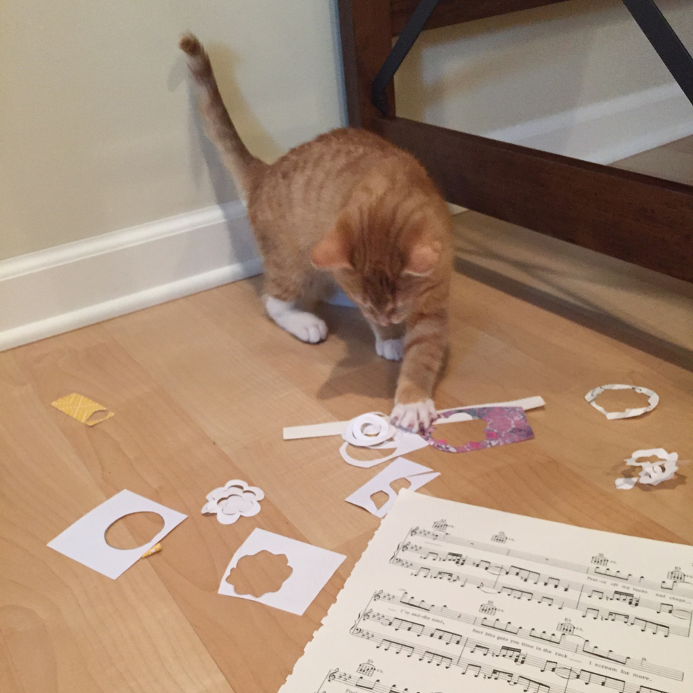 Unlike me Pim LOVED being on camera and had a ton of fun with my paper scraps!