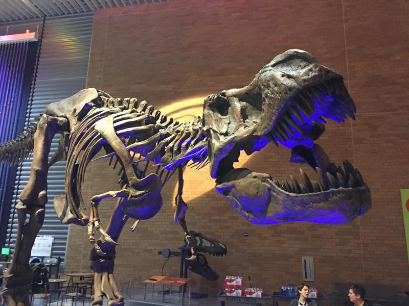 Gotta love a T-rex!