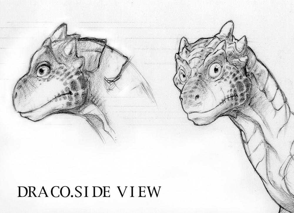 draco-side-view.jpg.jpg