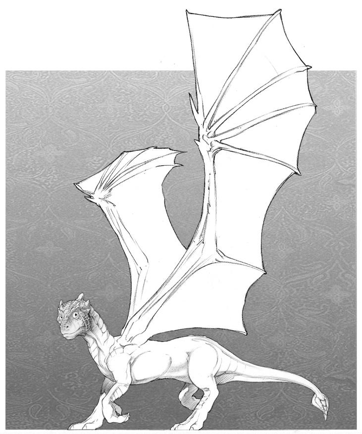 draco4-final-jpeg.jpg