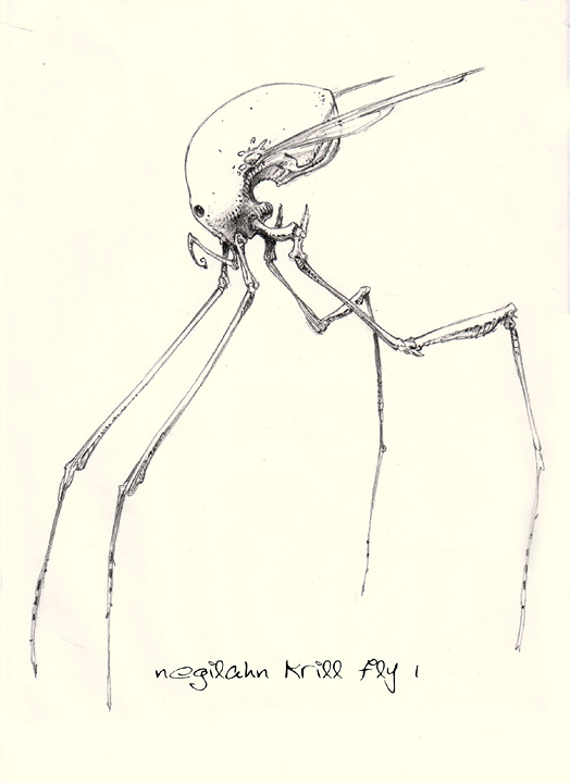 Krillfly.jpg