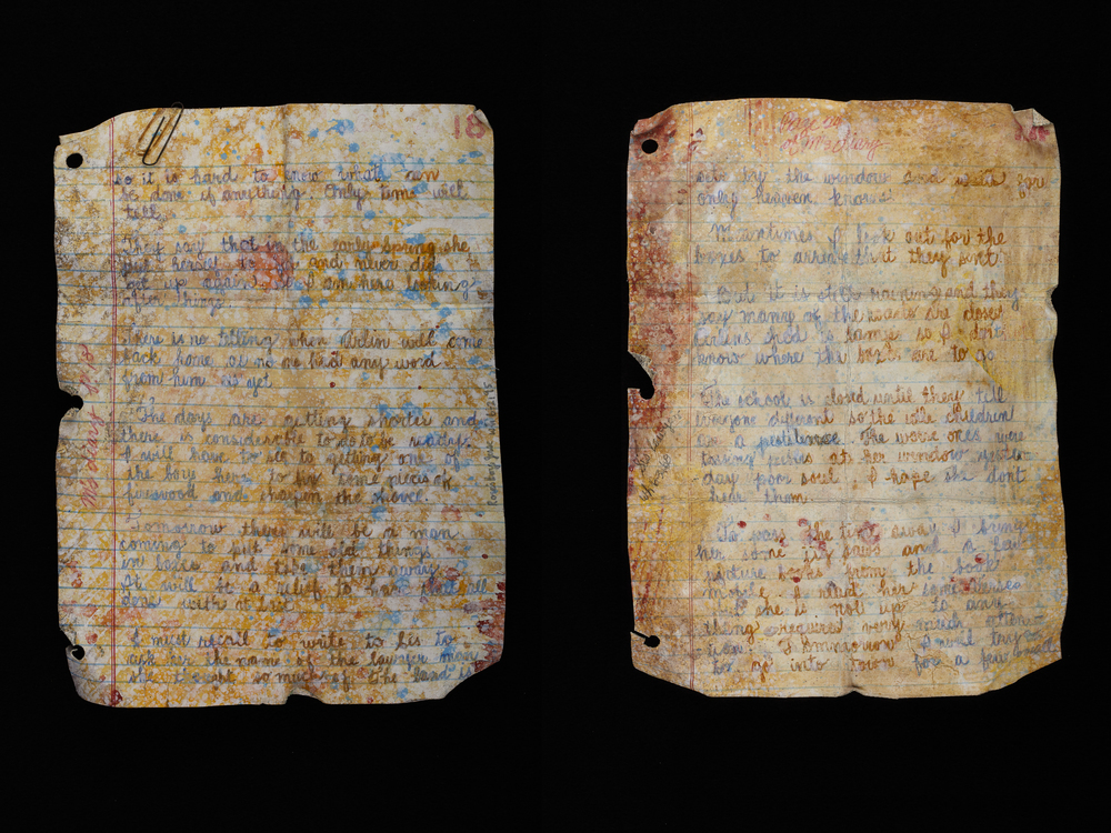 Myrna's Diary - Pgs 18 & 24 - (Diptych)