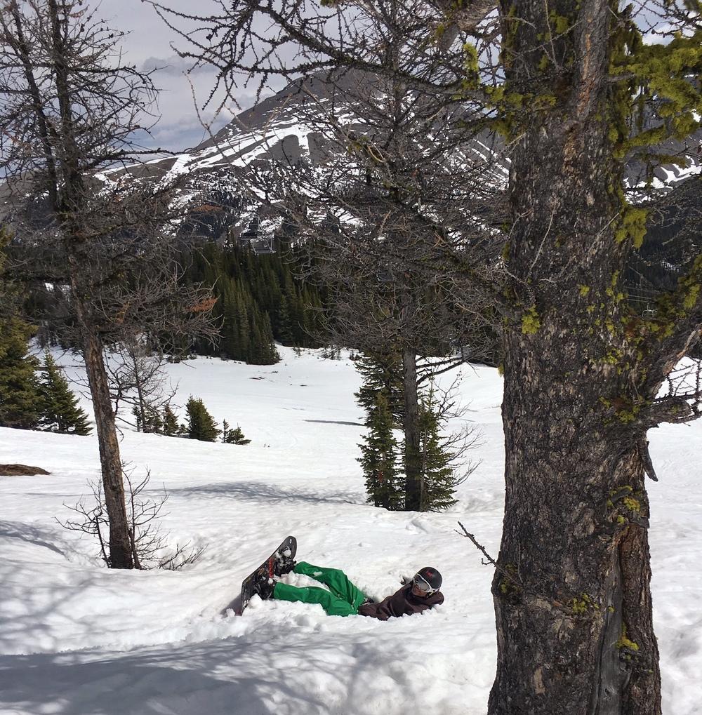 Mick-lying-down.jpg