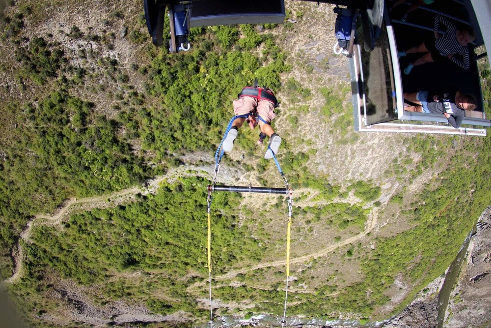 NEVIS SWING - THE VIEW FROM ABOVE