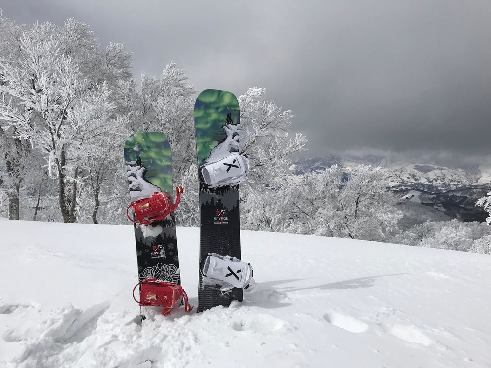 savage panda custom snowboards in the snow.JPG