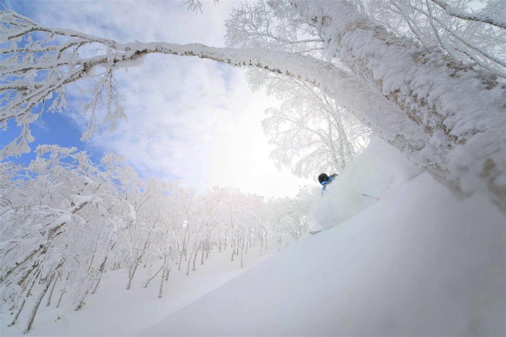 skiing in Rusutsu