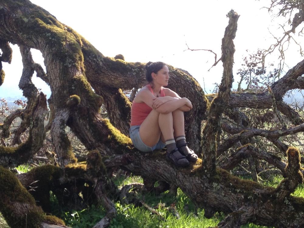 Pondering nature