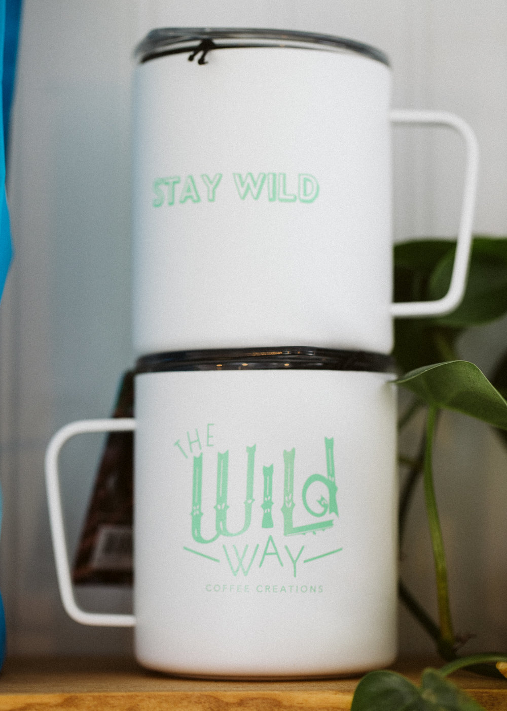 The Wild Way | Adri Guyer Photo 09.jpg