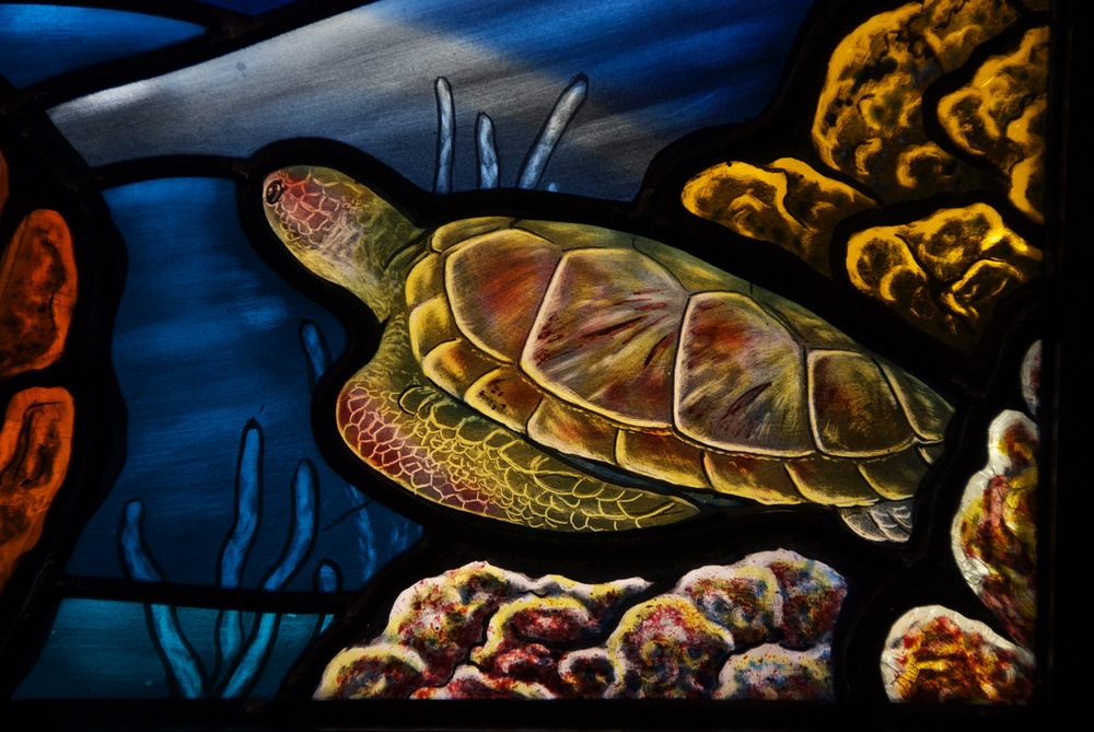 Loggerhead Turtle, painted stained glass.