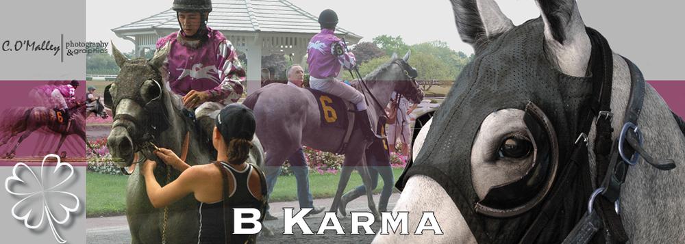 B Karma.jpg
