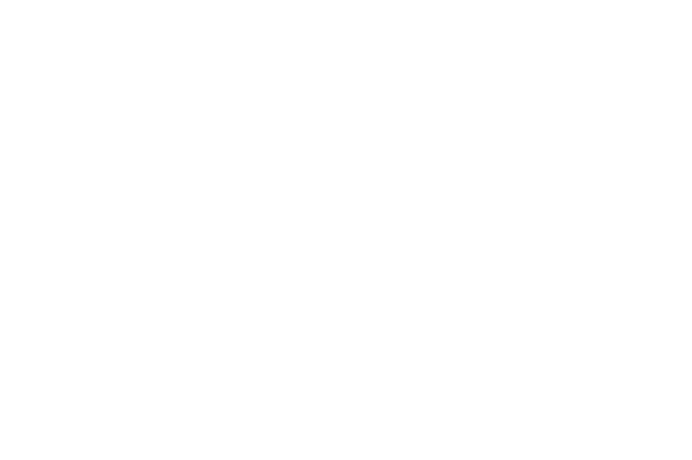 OFFICIALSELECTION-SOFLOWEBFEST-MIAMIFL2017 (3).png