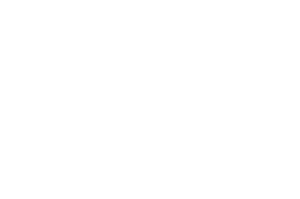 OFFICIAL SELECTION - Feel The Reel International Film Festival 2016 - Masc Only.png