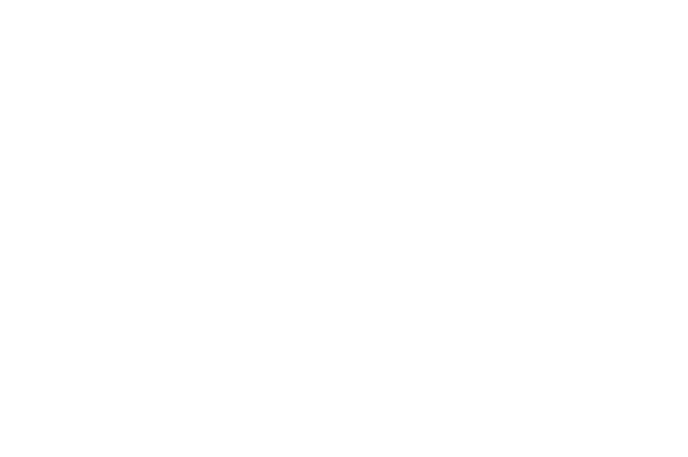 OFFICIAL SELECTION - TO Webfest 2017 - Letting Go.png