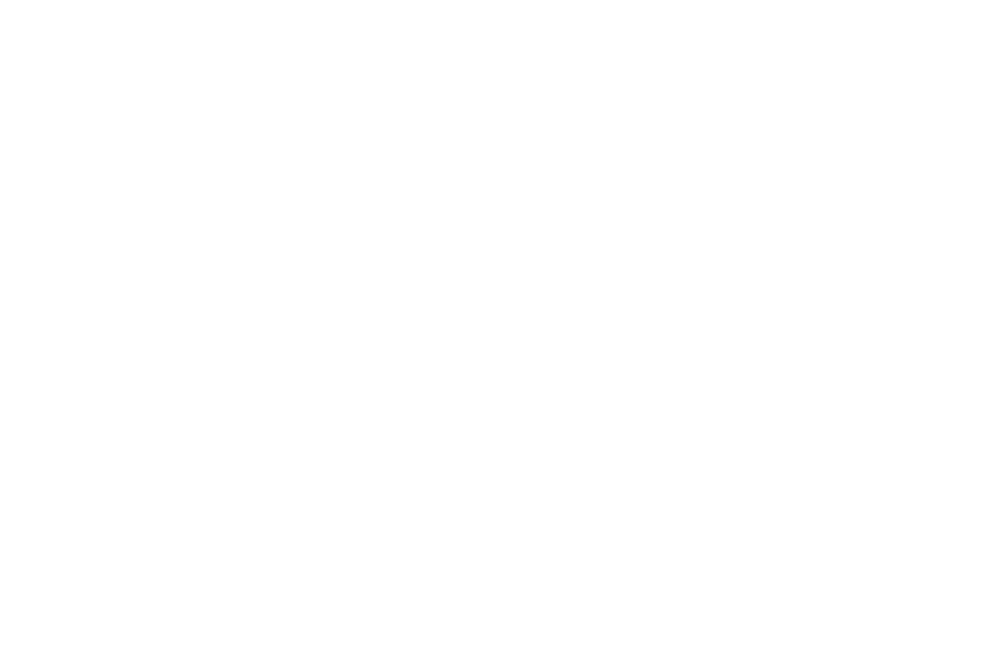 OFFICIAL SELECTION - Best Shorts Competition - 2017 (1).png
