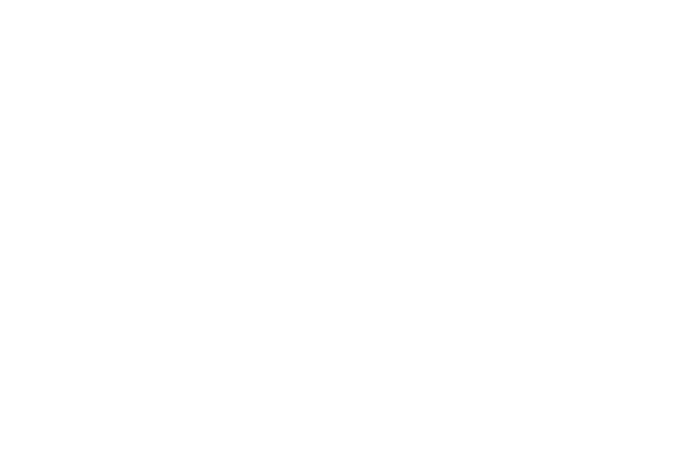 Sir Edmund Hillary Award 2017 - Mountain Film Festival - Void.png