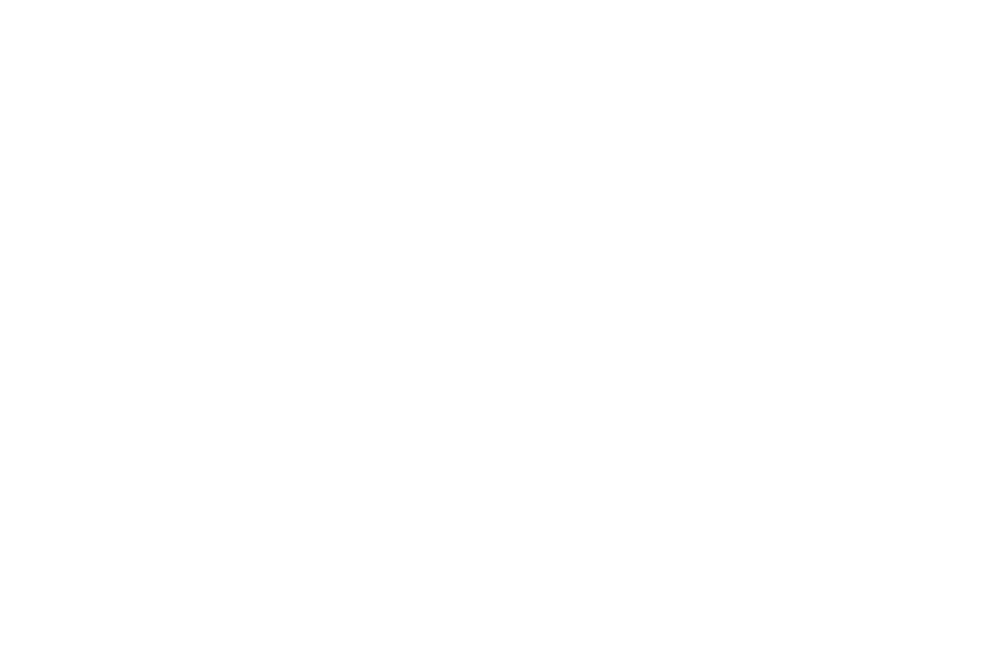 BEST TELEVISION PILOT - Honolulu Film Awards 2017 - Void.png