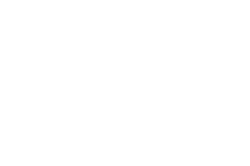 ALOHA ACCOLADE WINNER - Honolulu Film Awards 2017 - Letting Go.png