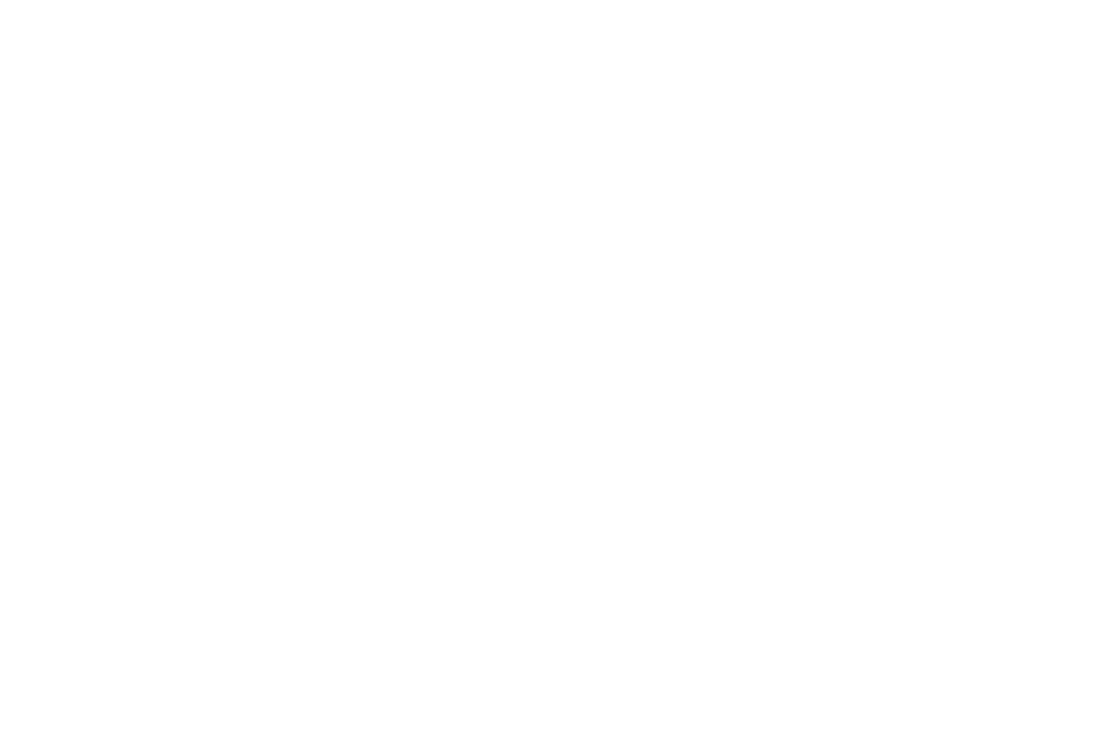 Award of Excellence Script Writing - Depth of Field International Film Festival 2017 - Letting Go.png