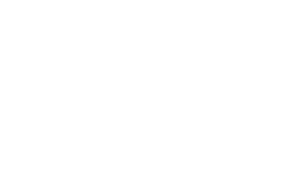 OFFICIAL SELECTION - Direct Monthly Online Film Festival 2017 - Snap.png