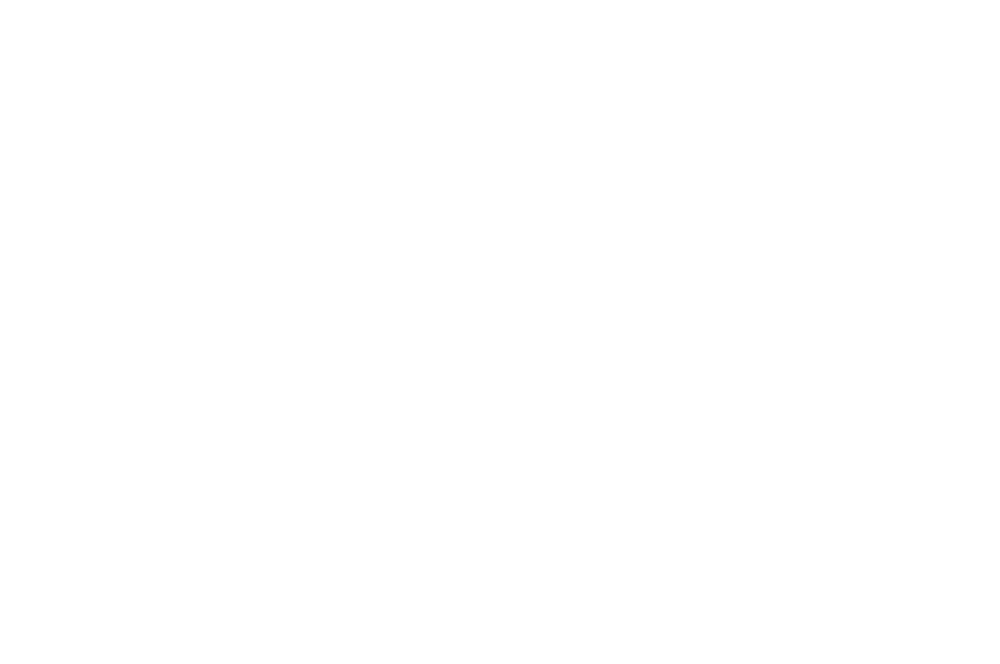OFFICIAL SELECTION - Webisode Festival - 2018.png
