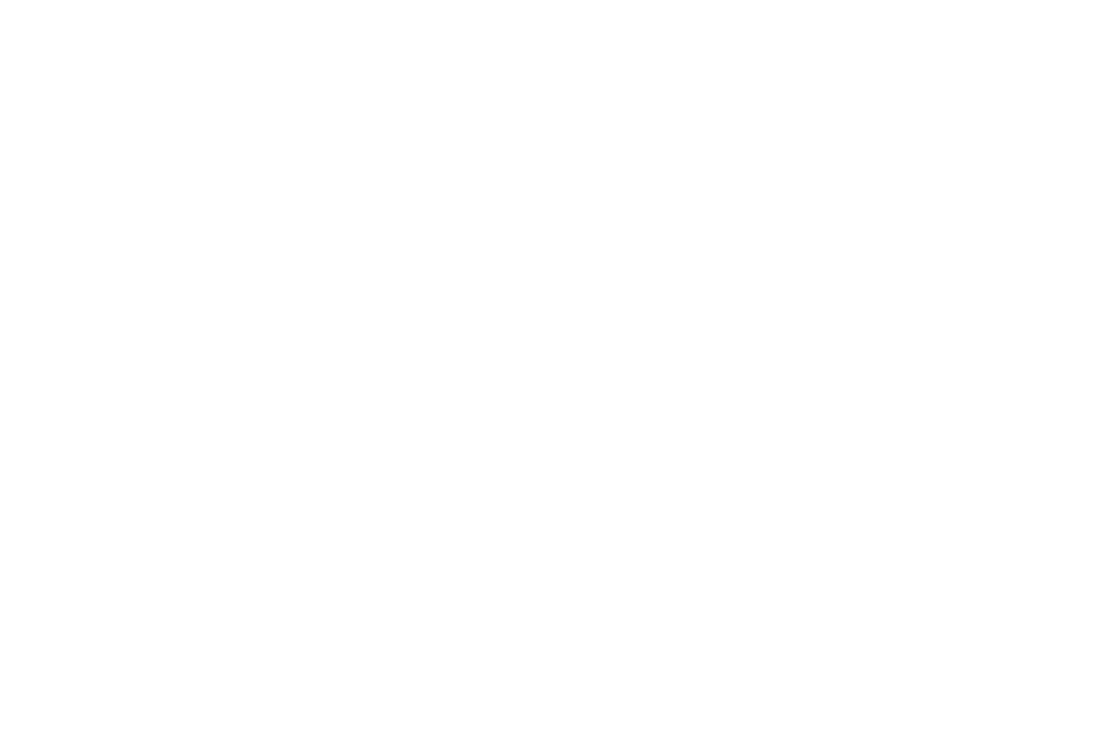 Aloha Accolade Winner - Honolulu Film Awards - 2018 - Worth It.png