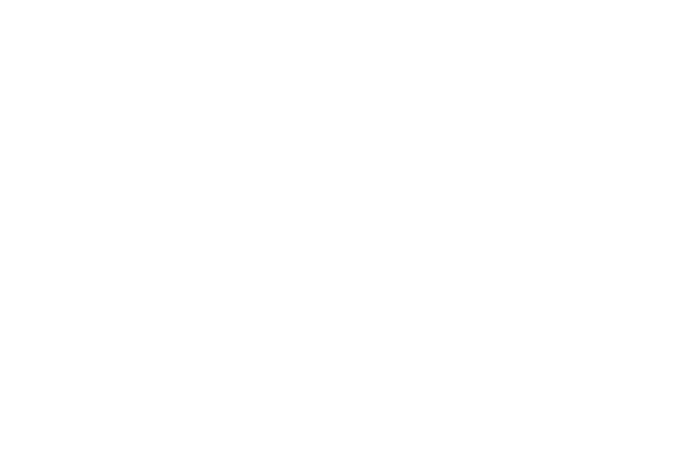 OFFICIAL SELECTION - Big Apple Film Festival WEB SERIES AND MUSIC VIDEO EXPO - 2018.png