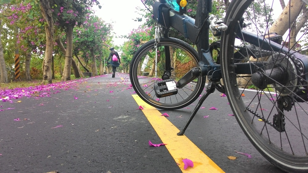 Seasonal flowers create seasonal beauties in Taiwan bike paths