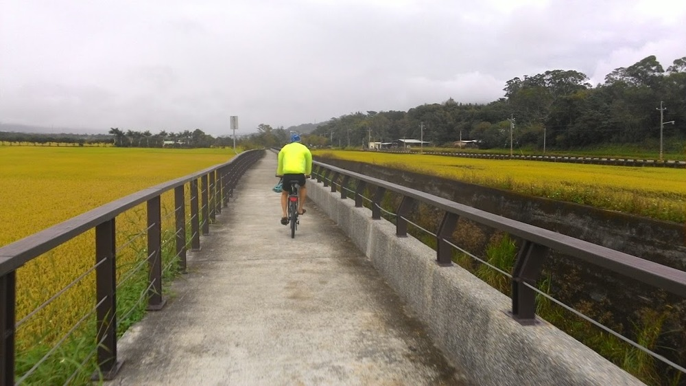 Chihsang Rice Field Bicycle Riding