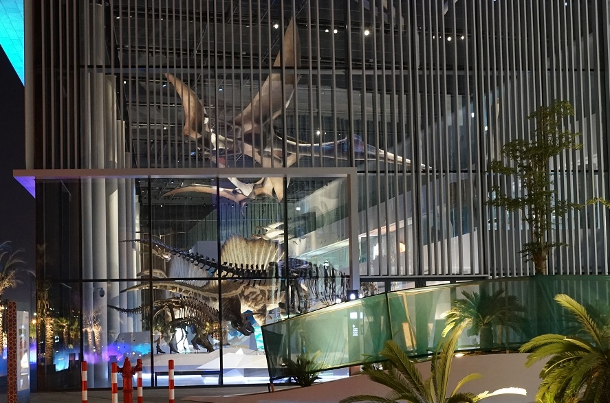 The Natural History Museum as seen from the outside, showing off our lighting design for the displays within.