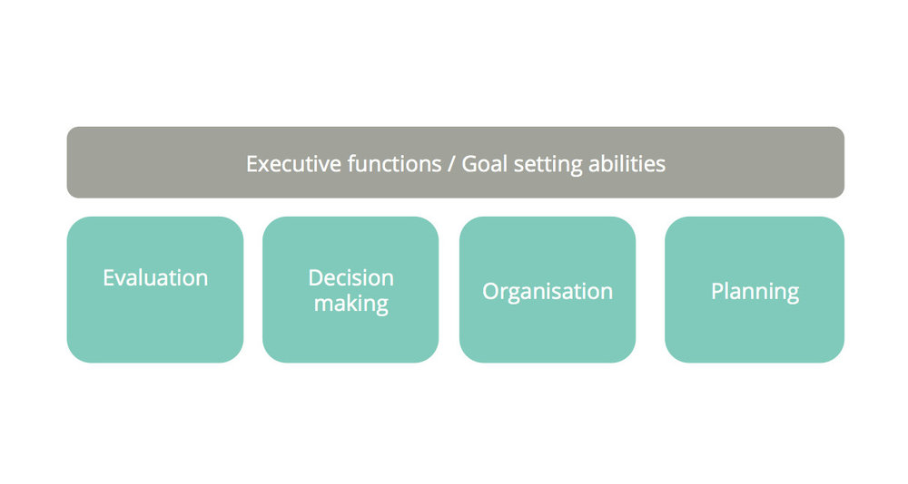 Our goal-setting abilities can be described as 'executive functions', including evaluation, decision-making, organization and planning.