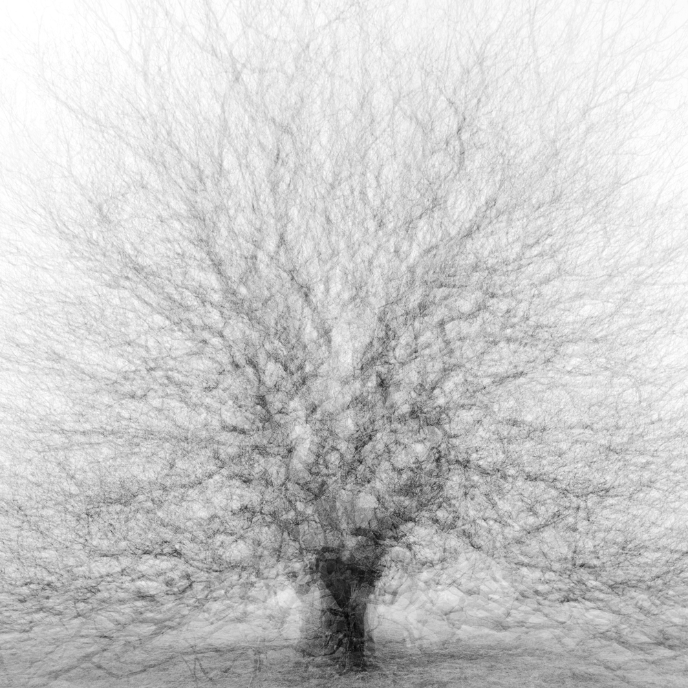 Self crop 1x1.jpg