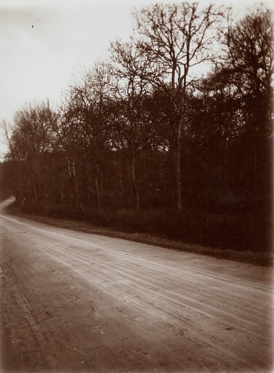 Polden Hills, Shapwick, Bridgwater, Somerset.jpg