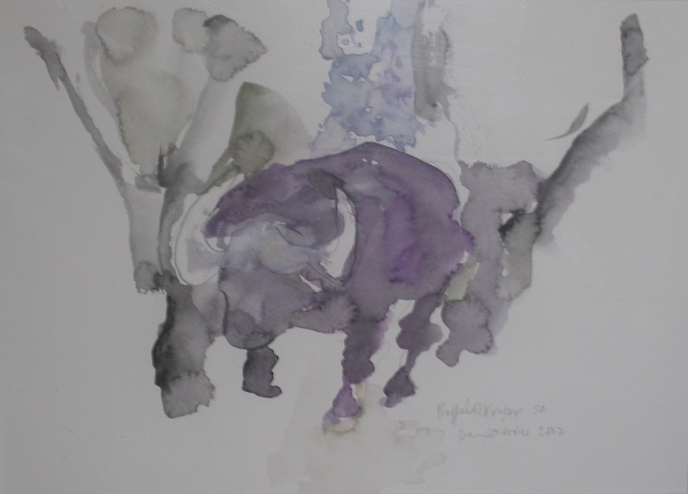 Buffalo l Kruger
