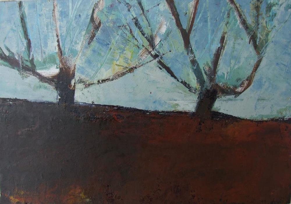 November Orchard