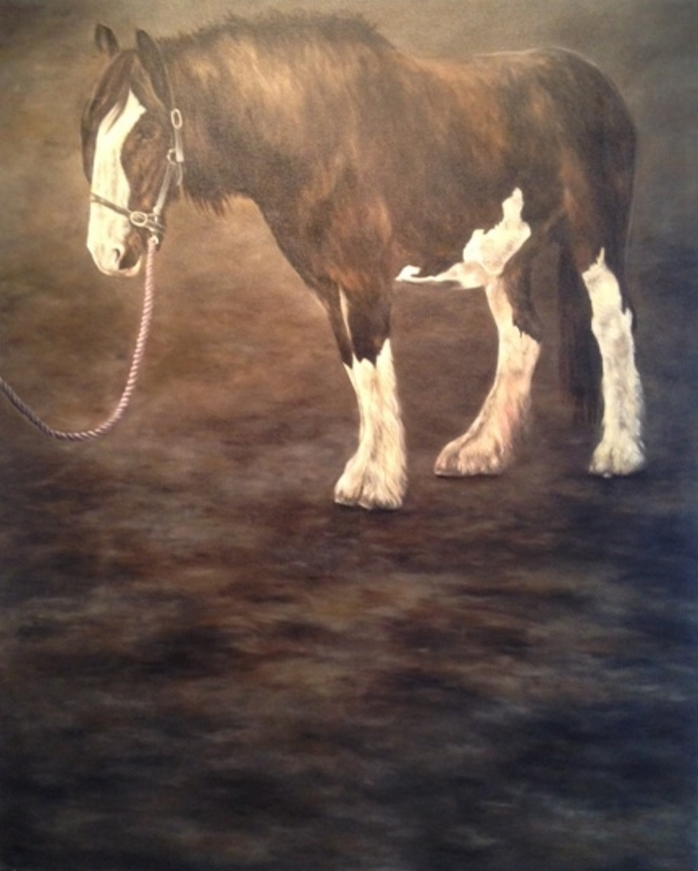 Hiberno Horse