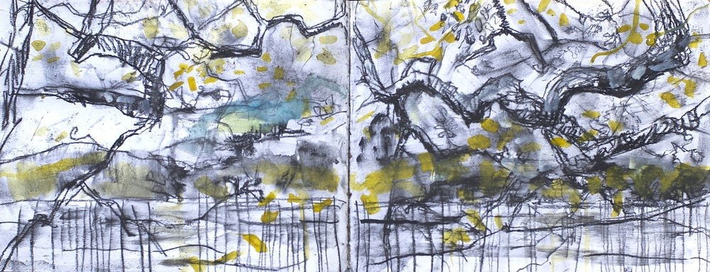 Conor Galalgher Artist. Dooney Wood sketch