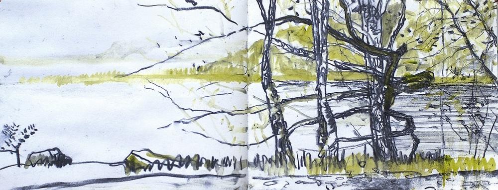 Conor Galalgher Artist. Slish Wood Sketch