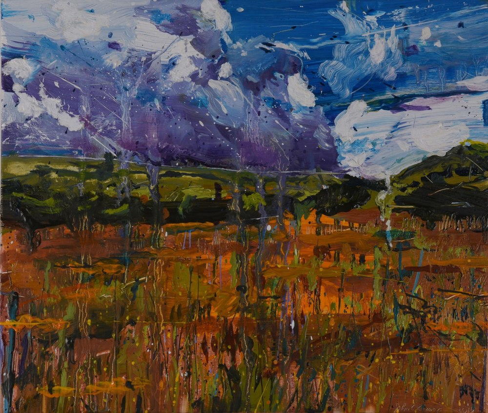 Raincloud, the Boggadh Bog. John O'Connor Artist